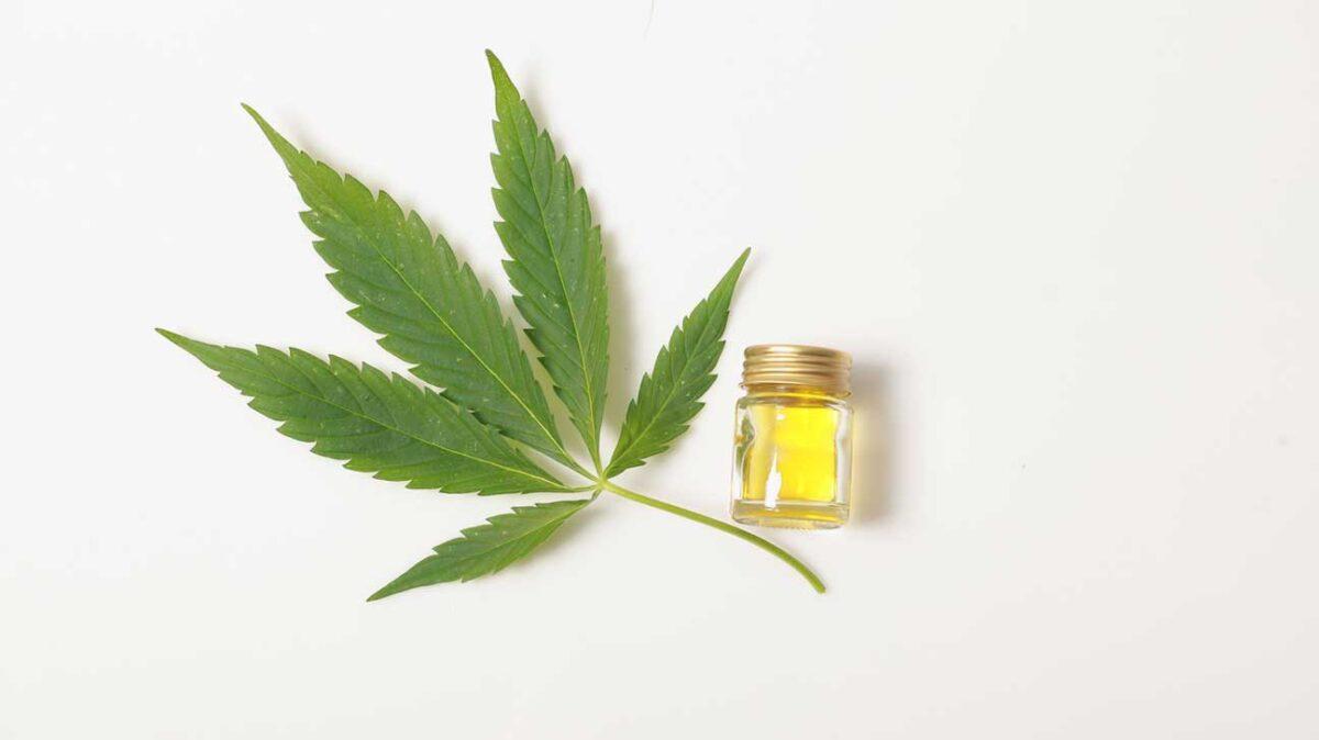 Amazing Health Benefits Of Cannabidiol Oil